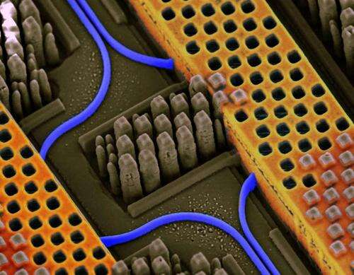 IBM silicon nanophotonic chip showing blue optical waveguides and copper conductors for high-speed electrical signals.(Source: IBM)