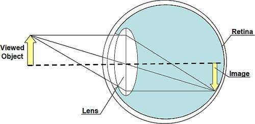 The eye captures a viewed image that the camera tries to emulate. (Source: University of Alabama, College of Engineering)