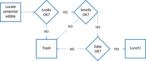 Flowchart for deciding whether or not something is OK to eat for lunch.