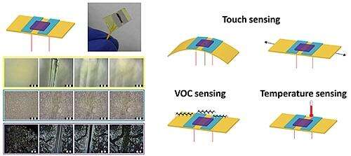 A new kind of synthetic polymer is key to development of a self-healing, flexible sensor that mimics the self-healing properties of human skin (from Technion/Israel Institute of Technology, Self-healing-sensor-brings-electronic-skin-closer-to-reality ).