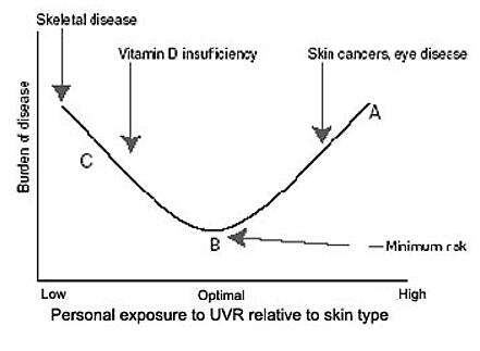 The graph that shows the correlation between the burden of disease and the personal exposure to UV rays (Source: who.int)