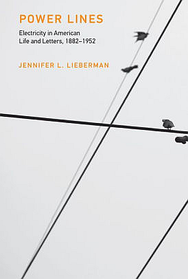 Copyright Year:   2017 Author(s):   Jennifer L. Lieberman Publisher:   MIT Press  Content Type:   Books  Topics:   Technology, Electricity and Power Engineering