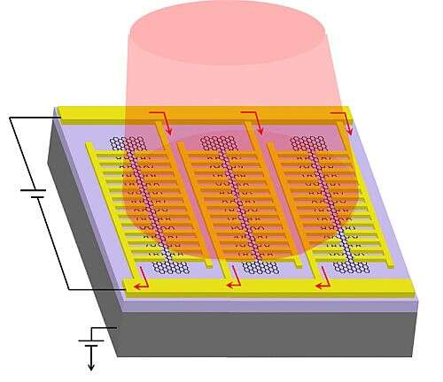 Schematic of the photodetector developed by UCLA engineers, showing gold comb-shaped nanopatterns on top of graphene nanostripes (hexagonal structures) and light source (pink cylinder). (Image source: UCLA)